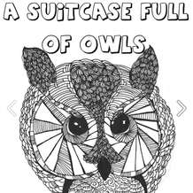 A-suitcase-full-of-owls-jump-the-shark-the-karma-suits-1384201308