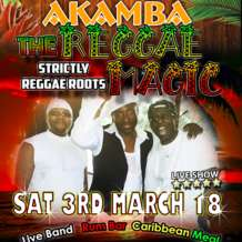 The-reggae-magic-1515793035