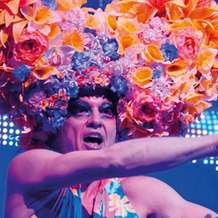 Priscilla-queen-of-the-desert-1353240575