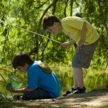 Pond-dipping-1535133901