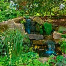 Guided-tour-rock-garden-1580414181