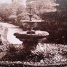 Guided-tour-heritage-and-history-of-the-birmingham-botanical-gardens-1580416638