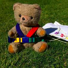 National-play-day-teddy-bears-zip-wire-1436609747