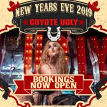 Coyote-new-year-s-eve-1577453130