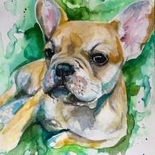 Paint-your-own-pet-portrait-3-week-workshop-1549559576
