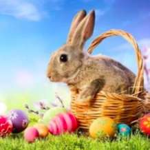 Bunnies-and-baskets-1578948747