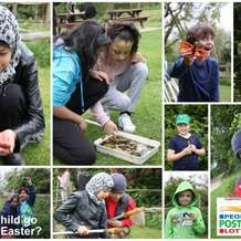 Wildlife-trust-for-birmingham-and-black-country-wild-family-fun-day-1499948761