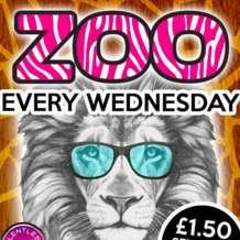 Zoo-1556312300