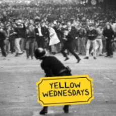 Yellow-wednesdays-1523902167