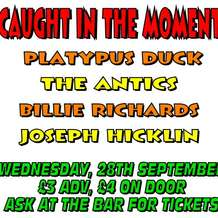 Caught-in-the-moment-platypus-duck-billie-richards