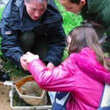 Pond-dipping-1552312773