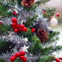 Natural-christmas-1575283433