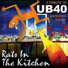 Rats-in-the-kitchen-1579448046