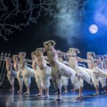Matthew-bourne-s-swan-lake-1551300789
