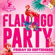 Flamingo-party-1533753994
