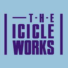 The-icicle-works-1559850220