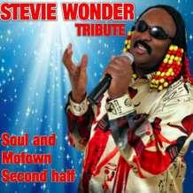 Stevie-wonder-tribute-1549530752
