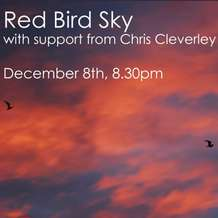 Red-bird-sky-chris-cleverly-1354570427