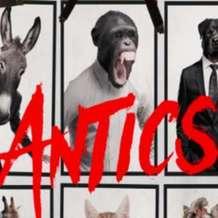 Antics-1523348307
