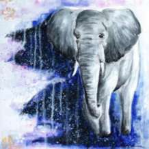 Paint-elephant-dream-1578657953
