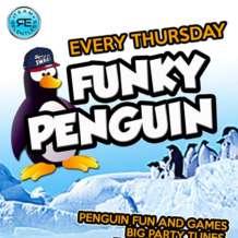Funky-penguin-1556354836