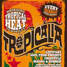 Tropicalia-1338409497
