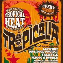 Tropicalia-1342815425