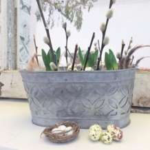 Natural-spring-bulb-centre-piece-potting-workshop-1579271333