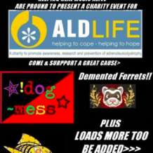 A-charity-event-for-aldlife-1551174930