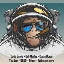 Space-monkey-1576010946