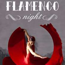 Flamenco-night-1351424782