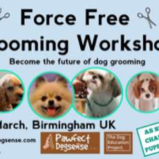 Dog-grooming-workshop-1581936870