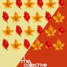 The-collective-1546505949