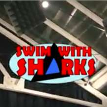 Swim-with-sharks-1511467107