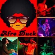 Afro-duck-1576145458