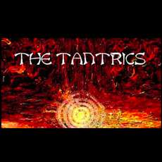 The-tantrics-the-day-after-electric-cake-salad-1342380557