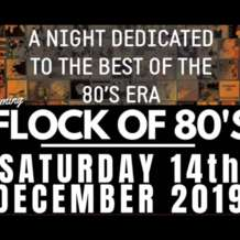 A-flock-of-80s-1576255762