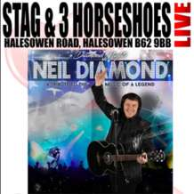 Neil-diamond-tribute-1554322037