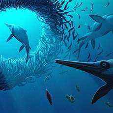 There-s-an-ichthyosaur-in-the-museum-1531753318