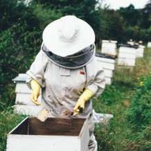 Introduction-to-beekeeping-1496524464