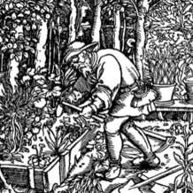 Introduction-to-garden-history-6-week-course-1523626086